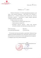 RZI Dokumentacja kosztorysowa 2013.pdf